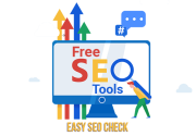Easy SEO check does not offer any online payment option/paid membership option on its website
